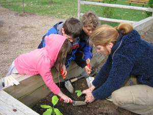 Kindergartners in New York help plant seedlings in their newly opened Wangari Tree Nursery.