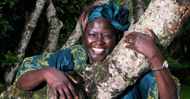 Heartfelt tributes were received from world leaders and friends after Professor Wangari Maathai passed away.