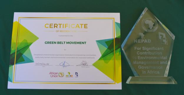 Green Belt Movement awarded at the 1st Africa Environment Partnership Platform